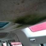 20111024-070201.jpg